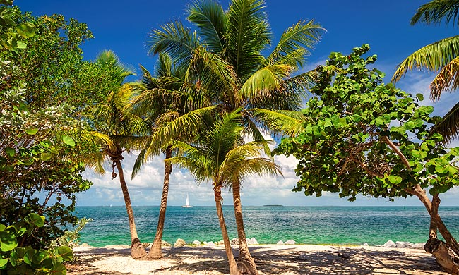 B_505_US_KeyWest_Fotolia_103127982_Subscription_Monthly_Mweb