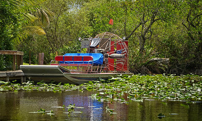 B_505_Us_Everglades_Fotolia_70055810_Subscription_Monthly_Mweb