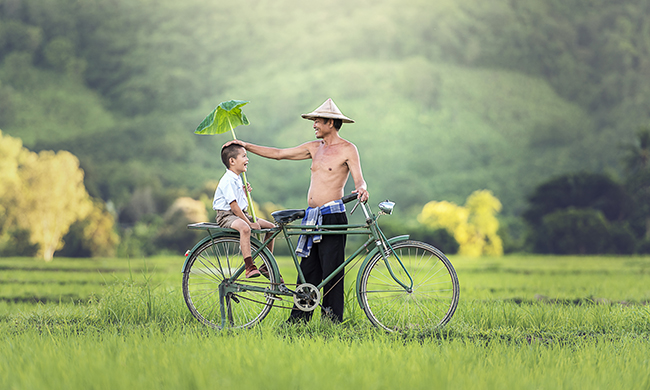 Photo n° 15 LUMIERES LAOS & CAMBODGE