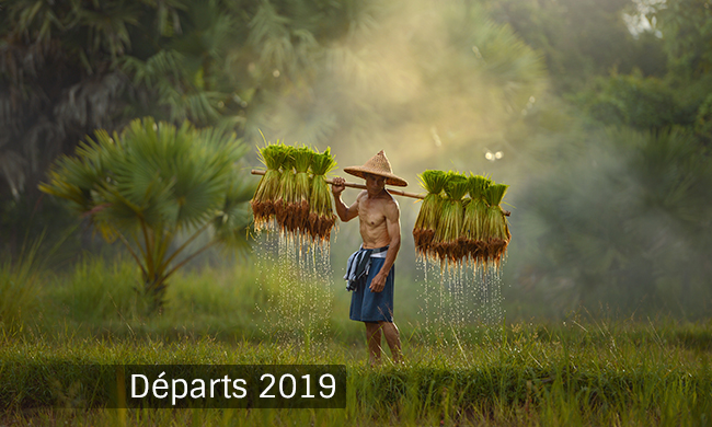 Photo n° 1 LUMIERES LAOS & CAMBODGE