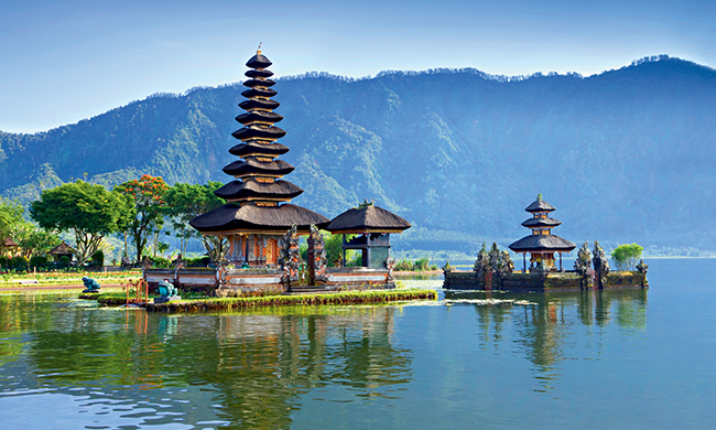 INDISPENSABLE BALI